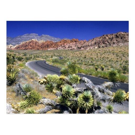 Région nationale de conservation de canyon rouge d cartes postales