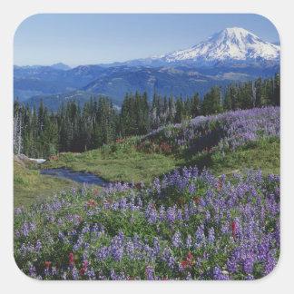 Région sauvage des Etats-Unis, Washington Mt. Sticker Carré