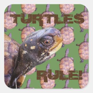 Règle de tortues ! sticker carré
