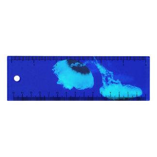 Règle Méduses au Mexique (bleu)