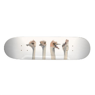 """Reine de drame "" Skateboard Customisable"