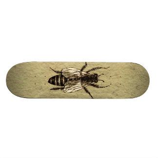 Reine des abeilles planche à roulette