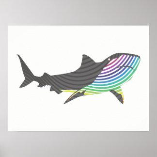 Remous de requin de couleur poster