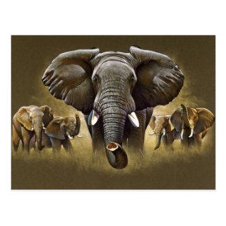 Remplissage de troupeau d'éléphant carte postale
