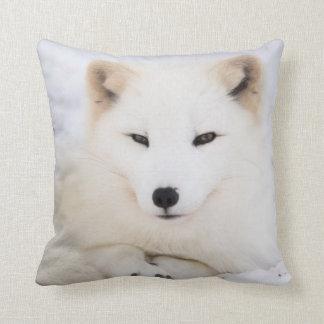 Renard arctique blanc dans la neige oreillers