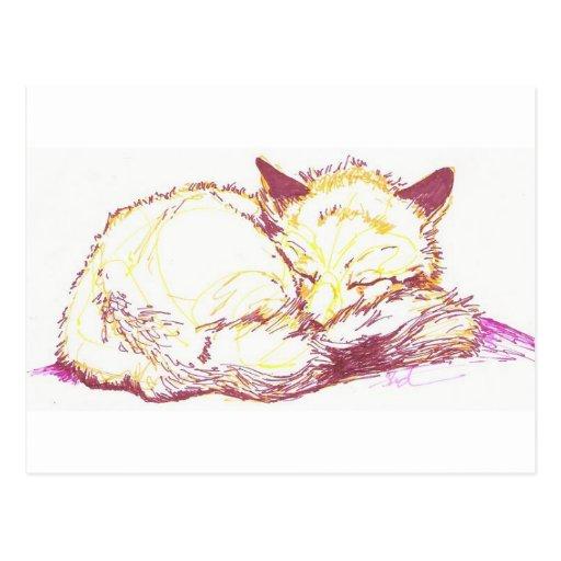 renarde de sommeil carte postale