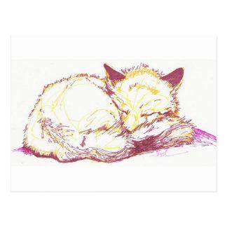 renarde de sommeil cartes postales
