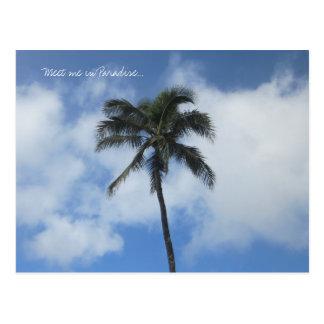 Rencontrez-moi en carte postale de paradis