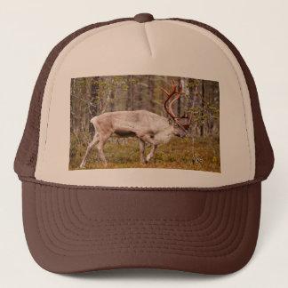 Renne marchant dans la forêt casquette