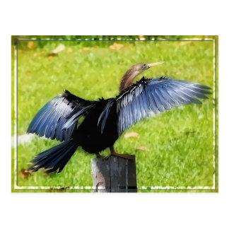 Répandez votre carte postale d'ailes