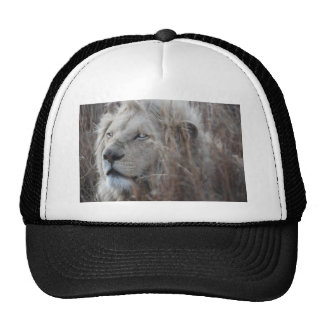 Repos blanc africain de lion casquette trucker