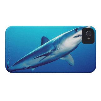Requin de Mako de Shortfin Coque Case-Mate iPhone 4