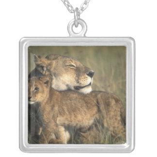 Réservation de jeu du Kenya, Mara de masai, lionne Pendentif Carré
