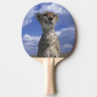 Réservation de jeu du Kenya, Mara de masai, plan Raquette Tennis De Table