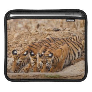 Réservation de tigre de Tadoba Andheri Poches Pour iPad