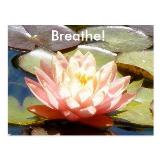 Respirez ! Carte postale de Lotus
