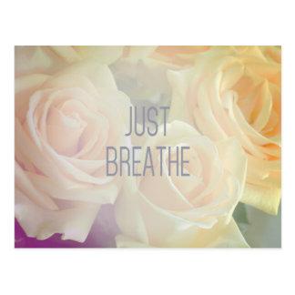 Respirez juste - la carte postale de roses