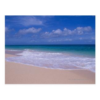 Ressacs écumant sur la plage sablonneuse carte postale