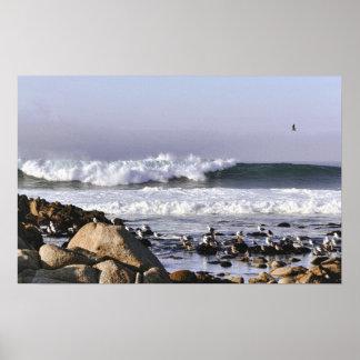 Ressacs en affiche de baie de Monterey