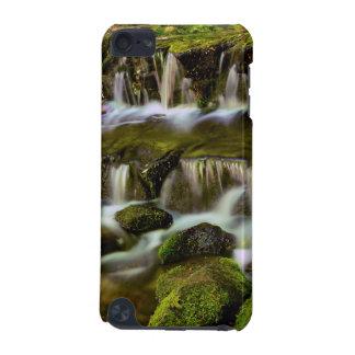 Ressort de fougère, parc national de Yosemite, la Coque iPod Touch 5G
