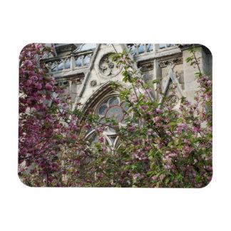 Ressort de Notre Dame Magnet Rectangulaire