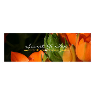 Ressort orange (2) carte de visite petit format