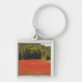 Ressort rouge Provence France de pavots Porte-clé Carré Argenté