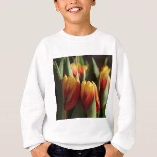 ressort sweatshirt