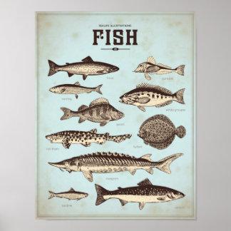 Rétro affiche marine avec différentes sortes de posters