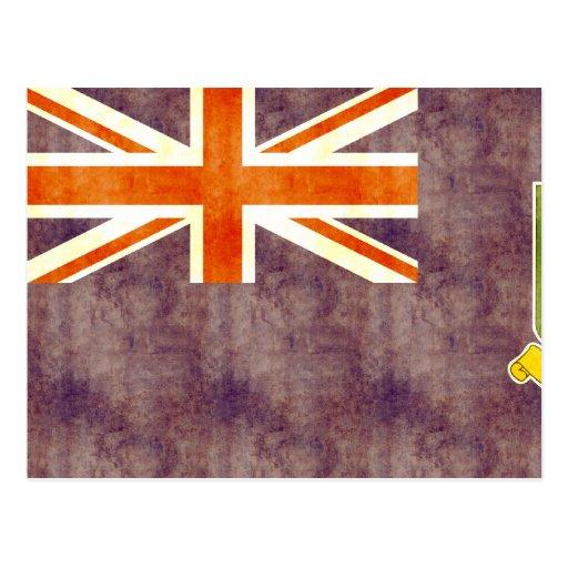 Rétro drapeau vintage des Îles Vierges britannique Cartes Postales