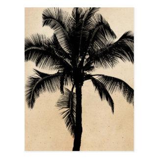 Rétro noir tropical hawaïen de silhouette de carte postale