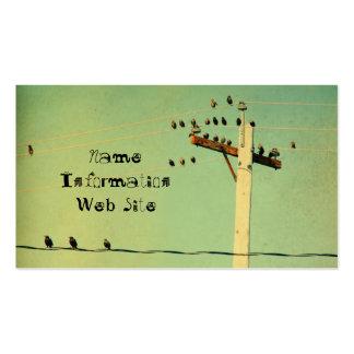 Rétros oiseaux carte de visite standard