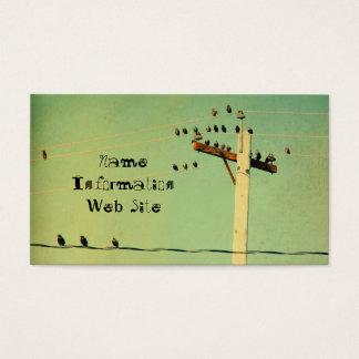 Rétros oiseaux cartes de visite