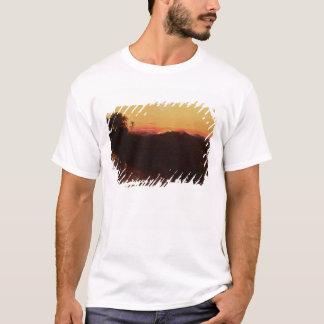 Réunion de Jacob et d'Esau T-shirt