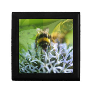 Rêves de l'abeille petite boîte à bijoux carrée