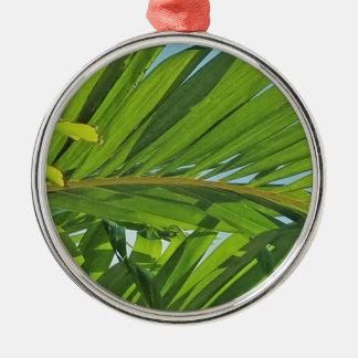 Rêves de palmier ornement rond argenté