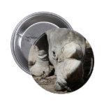 rhinocéros 2 badges avec agrafe