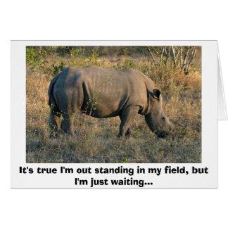 Rhinocéros blanc carte de vœux