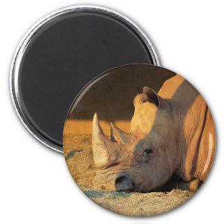 Rhinocéros dans l'aimant de coucher du soleil magnet rond 8 cm