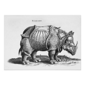 Rhinocéros, de 'Historia Animalium Posters