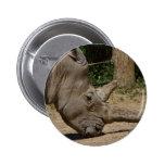 Rhinocéros - simum de simum de Ceratotherium Badge Avec Épingle