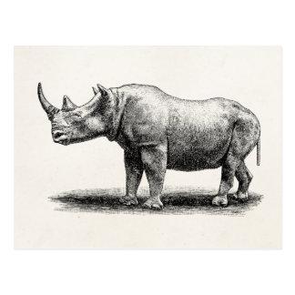 Rhinocéros vintages de rhinocéros d'illustration carte postale