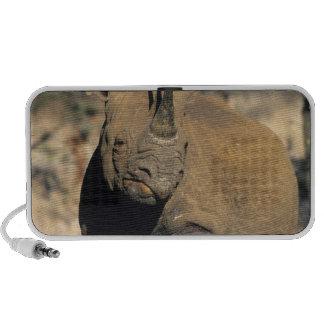 Rhinocerous noir, (bicornis de Diceros), du nord Haut-parleurs iPod