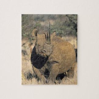 Rhinocerous noir, (bicornis de Diceros), du nord Puzzle