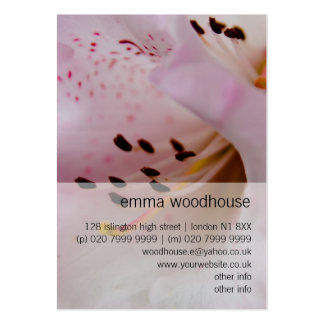 Rhododendron rose du rhododendron | Rosa Carte De Visite