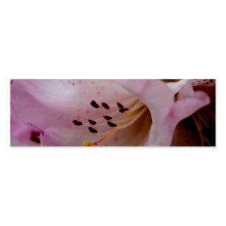 Rhododendron rose du rhododendron | Rosa Cartes De Visite Personnelles