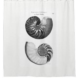 Rideau en douche de Nautilus