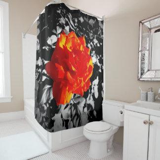 Rideau en douche de rose rouge