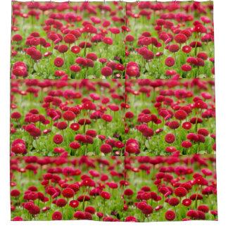 Rideau en douche rouge à la mode de fleur de l'été