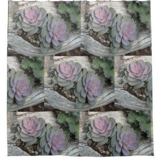 Rideaux De Douche Motif succulent d'Echeveria